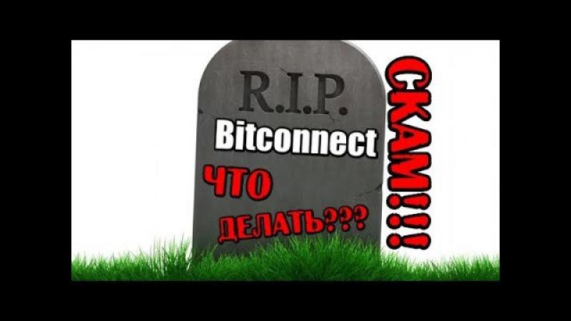 Bitconnect скам закрылся Что случилось Что делать