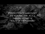 Pyotr Ilyich Tchaikovsky The Nutcracker, Act 2, Tableau III Part IV