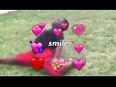 You so precious when you smile 😍😍😍😍 Meme compilation 1