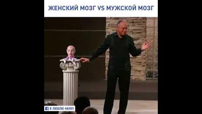 Мозг мужчины и женщины...Разница маленькая, но существенная!