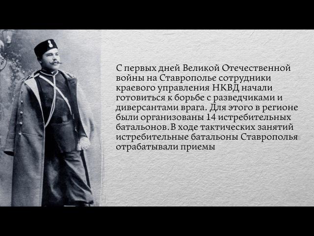 Проект История российской полиции - Выпуск 25 - Истребительные батальоны