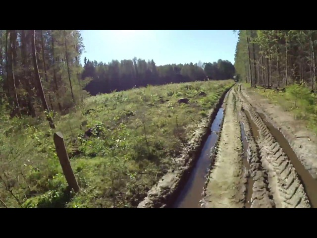 Конаковский Мох - Поездка на велосипеде по лесным дорогам