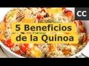 5 Beneficios de la Quinoa Ciencia de la Comida