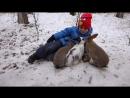 Ребята и зверята Карагайского бора Дружба навеки