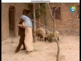 Сериал Клон. Дядя Али и Жади) #obovsem#жади#сериалклон#саид#саидижади#хадижа#зорайде#лукас#лараназира#латифа#лукасижади#ранья