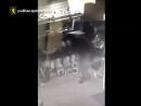 Подростки ограбили салон сотовой связи в Кишиневе