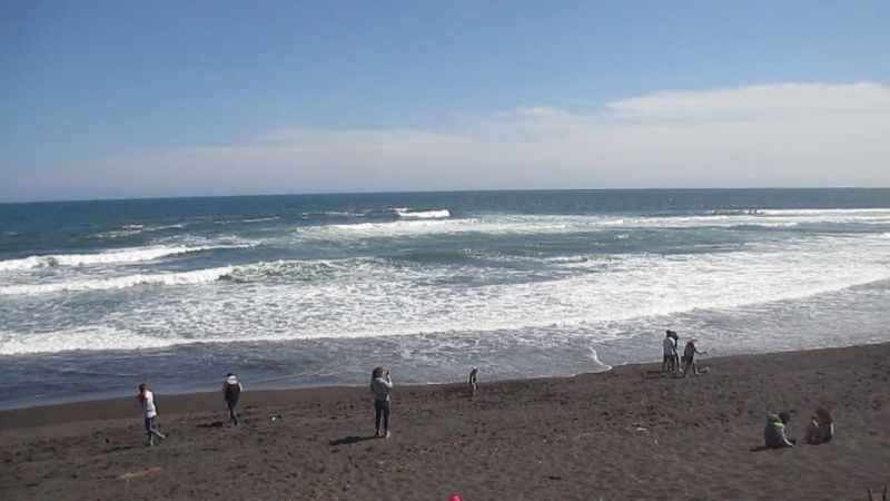 Халактырский пляж на побережье Тихого океана.