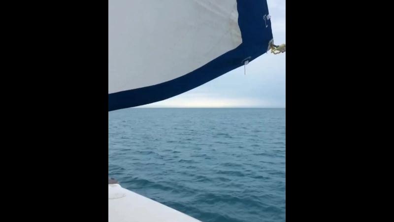 😻Black Sea 🌊