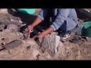 Солницата. Провадия. Археологические раскопки