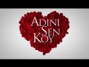 Adinisenkoy