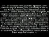 Сущность совершающих ширк - муфтий Абдуль-Азиз..wmv