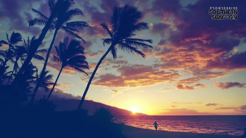 Veeshy - Palm Paradise (Entis Remix)