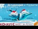 Новогоднее шоу Черноморских дельфинов в Тольятти