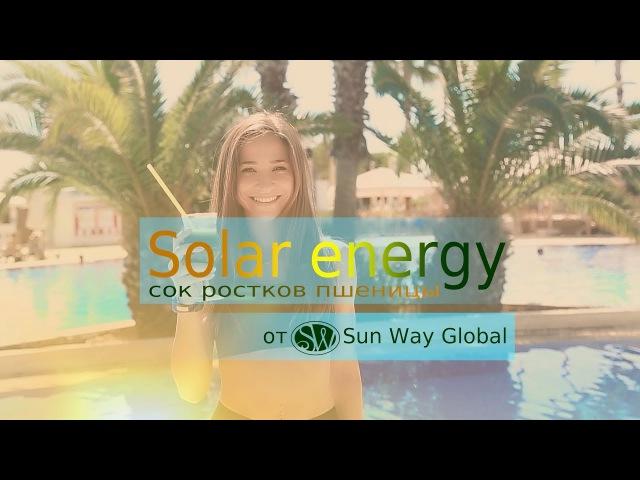 Solar Energy праздничная скидка к новому году При покупке 3 х банок сока ростков пшеницы 30% скидка