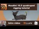Cat Quad-Rigging - Intro