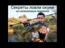Ловля окуня на силиконовые приманки советы и секреты Crazy Fish