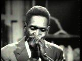 Walter 'Shakey'Horton - Shakey's Blues - 1965
