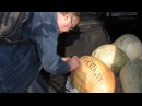 Аграрії на Полтавщині передали владі гарбуза