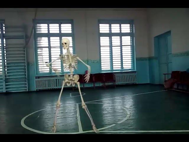 Скелет танцует у меня в школе