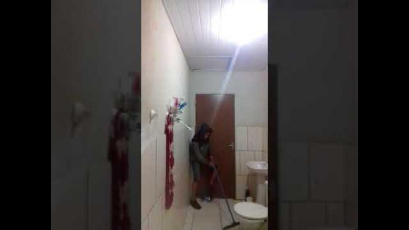 Вот что получается когда кот сам боится мышей