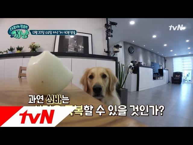 171218 tvN