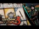 Сложность НЕВОЗМОЖНО БОСС Второго акта КИБО Shadow Fight 3