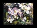 Trevor Waugh's Flower Painting's in Oil Acrylic.m4v