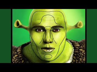 Is SHREK Perfect?