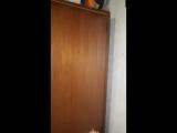 Пауки атакуют