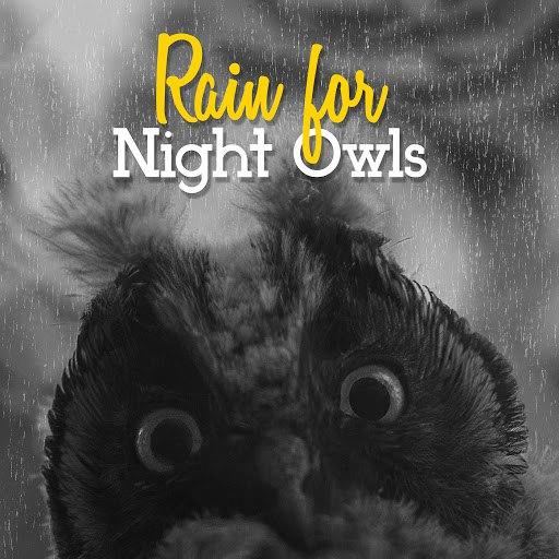 Rain альбом Rain for Night Owls