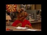 Alf Quote Season 3   Episode 18_Альф и Вилли
