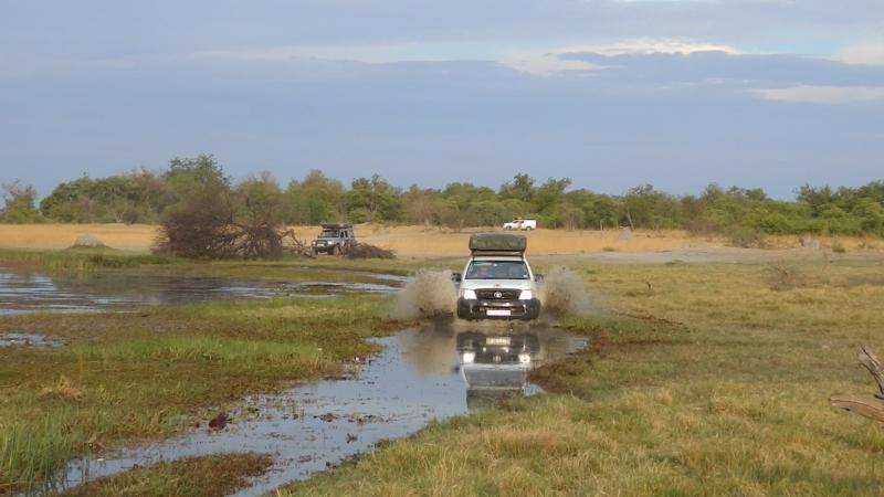 Африка - осень 2012 г. - дельта реки Окованго