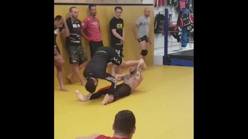 Диллон Данис и Конор МакГрегор проводят необычную тренировку