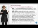 27 Общие и специфические корпуса Часть 2 Введение в корпусную лингвистику