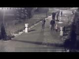 #мыжеродители гуляют в парке!