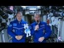 Талисман Зимней универсиады-2019 в космосе -- Winter Universiade 2019 Mascot in space