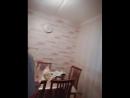 бізді кухняға жіберсен осы гой😂 телефон колдан түспид