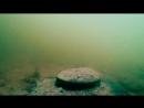 ЩУКА на Охоте Реакция рыбы на МАКУХУ и ПЕРЛОВКУ Подводная съемка