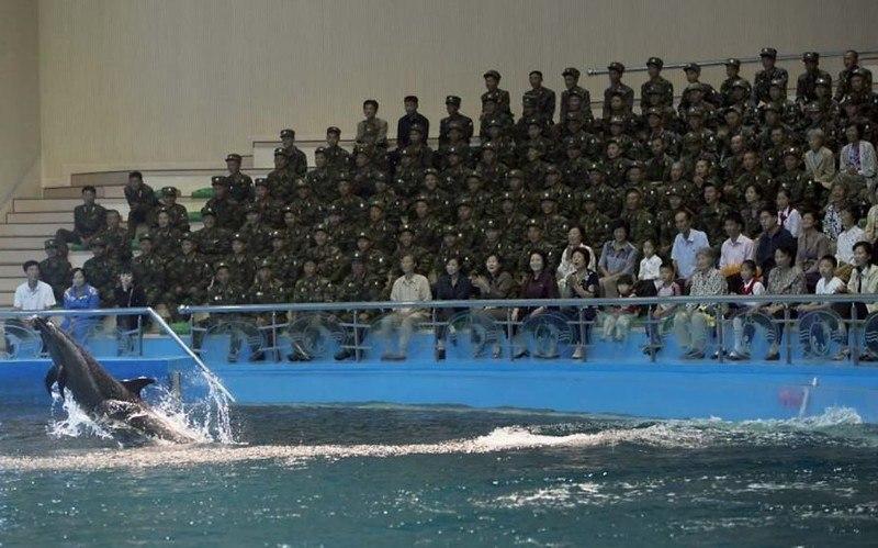 D58o2iE21ow - Что нельзя фотографировать в Северной Корее: 30 фото
