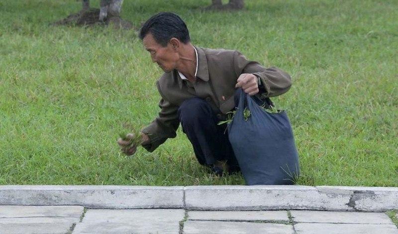 lvxT2ggqjFo - Что нельзя фотографировать в Северной Корее: 30 фото