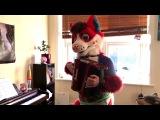 Keys The Fox - Fluff (@w@)