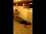 Guy vs Heater vs Safri duo
