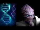 Хроники StarCraft ФИЗИОЛОГИЯ ПРОТОССОВ
