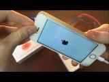 Как починить дисплей iPhone