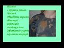 Платье Платье с рукавом реглан Часть 4 Обработка застежки поло