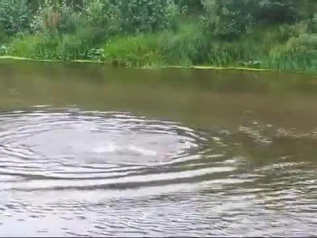 Способность бегать по воде   (Fresh Fun on YouTube) www.youtube.com/channel/UC_zEW8ZrmcBz2gIuO1LXiRg · coub, ко...