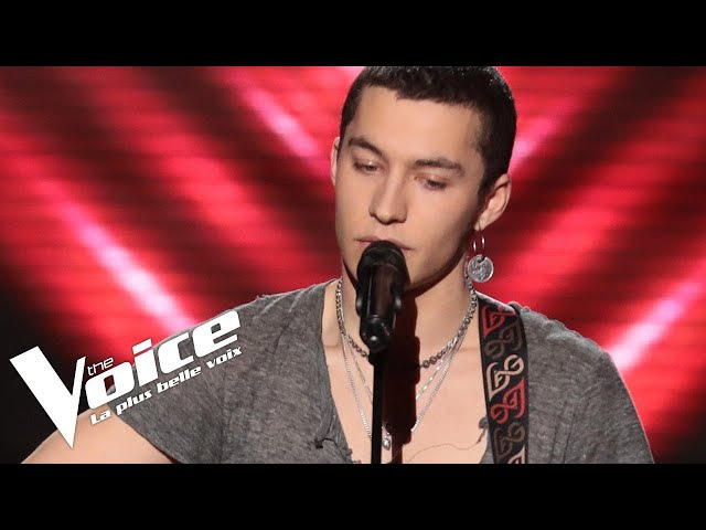 Elvis Presley (That's all Right Mama ) | Luca | The Voice France 2018 | Blind Audition