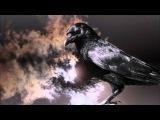Жанна Бичевская - Чёрный ворон