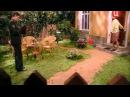 Сериал Золотая тёща 2 серия смотреть онлайн