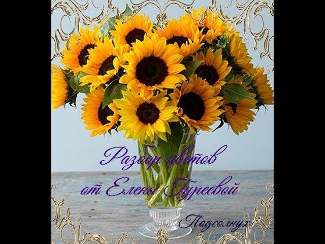 Подсолнух.Разбор цветка.Видеоразбор цветов от Елены Гуреевой.